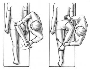 Hip Rotation Diagram | thePTDC | Hip Flexibility Exercises