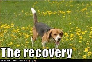personal-trainer-recovery